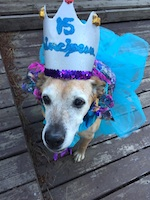 Thumbnail image for Stella turned 15 so we threw her a quinceañera (photos)
