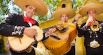 Thumbnail image for We've got your basic 2-hour-long mariachi music video right here