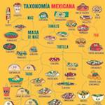Thumbnail image for It All Makes Sense Now! Taxonomy of Mexican Food (toon)